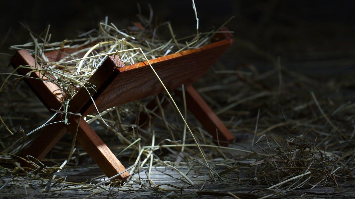 the-manger-ra8sz6zm.jpg